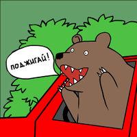 Горящий медведь просит поджигать.jpeg